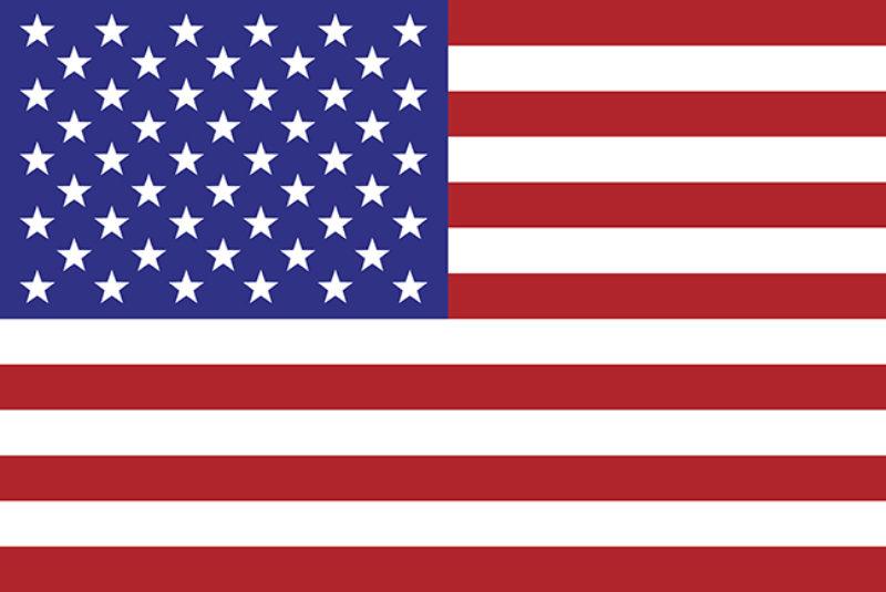 US Flag web
